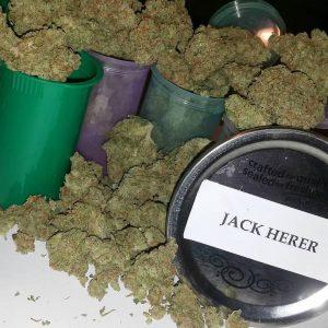 Buy Jack Herer Online in London