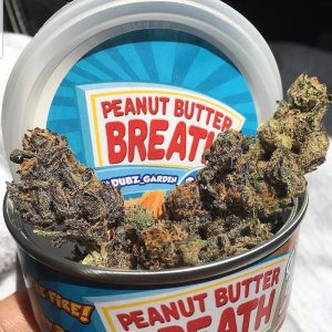 Buy Peanut Butter Cookies Breath online in Uk