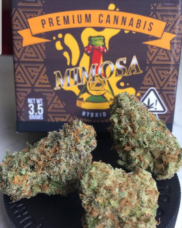Mail order Mimosa online in Uk