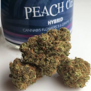 Buy Peach in Georgia US
