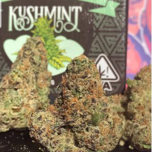 Buy Kush Mint in Portland