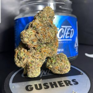 Buy Gushers online in Uk