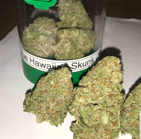 Buy Hawaiian Skunk online in Dallas