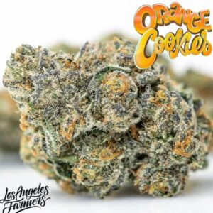 Buy Orange Cookies Jungle boys Online.